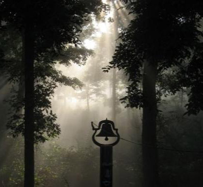 Bell in a Forest Glade