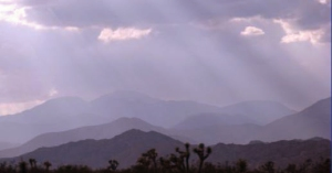 View of distant mountain through filtered sunlight