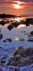Sunset reflected in ocean shallows