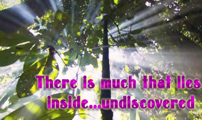 Forest light shining thru leaves and quote, There is much that lies within...undiscovered