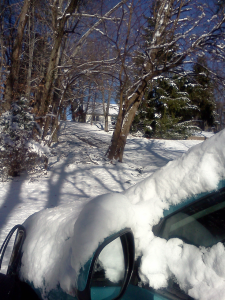 Driveway after the Winter Snow of 2014
