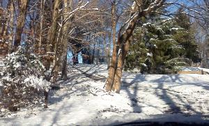 Driveway after shoveling