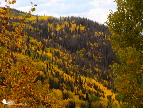 Near Steamboat Springs, Colorado - before the massive snowfall