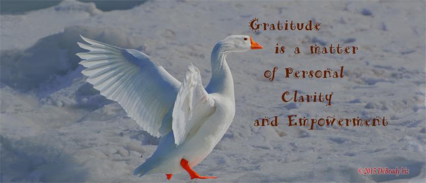 Gratitude-Clarity